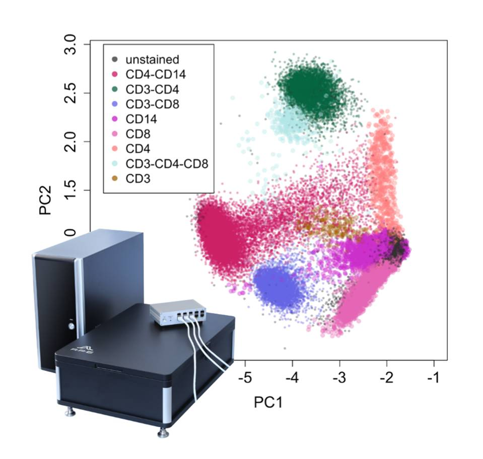 true multispectral flow cytometry pulse shape analysis